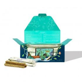 【茶食光光】阿里山炭焙烏龍茶起酥餅 (15支盒裝)【中秋限定包裝】